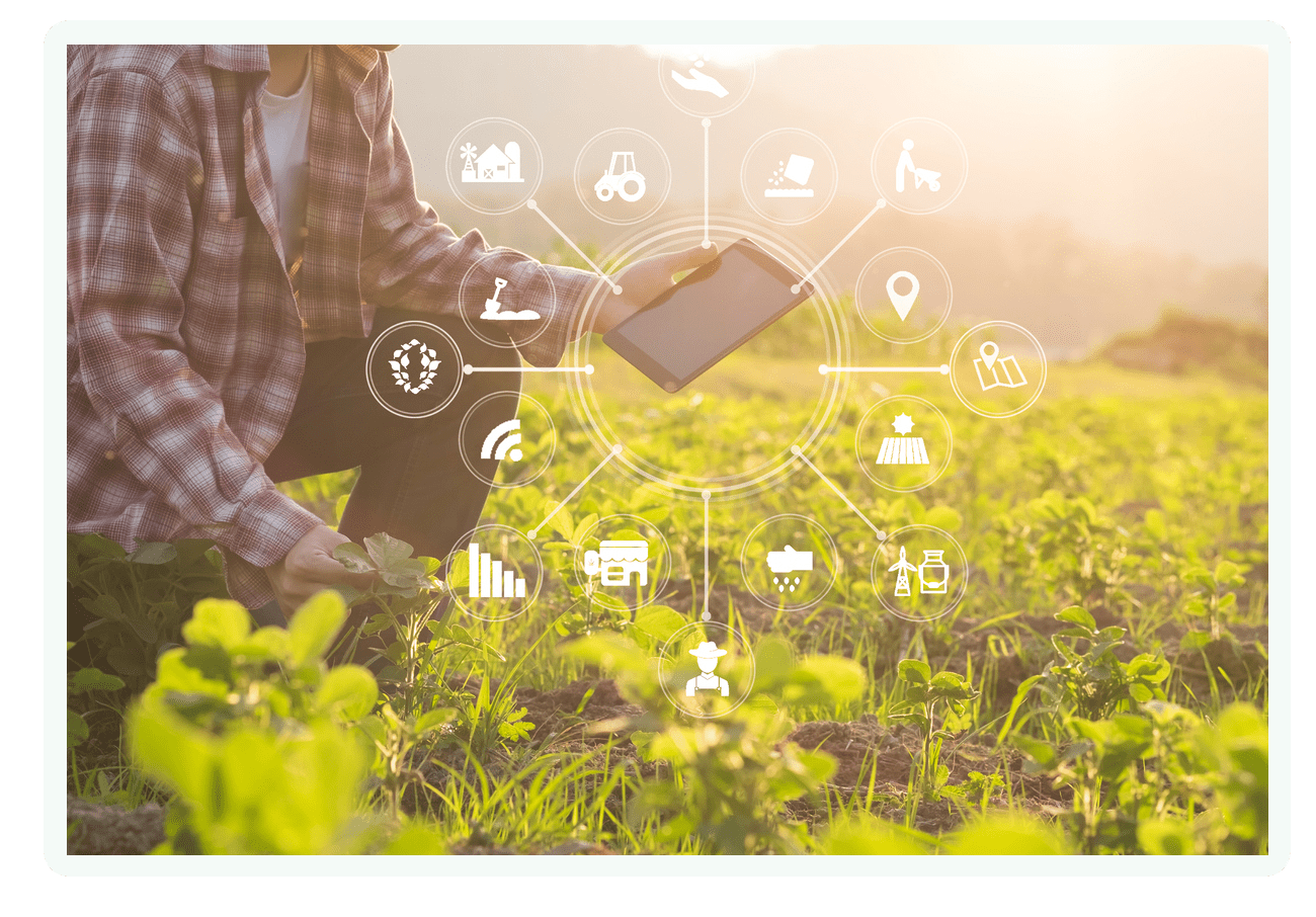 farmer using tablet in the field for reports