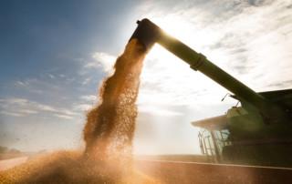 combine with corn